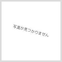 [YAWL-33(S)-S]リクシル[LIXIL/INAX]狭小手洗シリーズ手洗タイプ[丸形][床給水/床排水(Sトラップ)][アクアセラミック]【送料無料】
