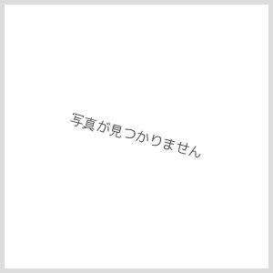 画像1: リクシル[LIXIL/INAX]狭小手洗シリーズ手洗タイプ[丸形]AWL-33(S)-S[床給水/床排水(Sトラップ)][ハイパーキラミック]【送料無料】